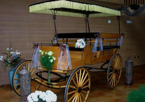 Fringed Carriage